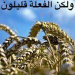 FB_IMG_1583597454241.jpg